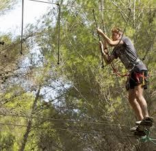 jungle ropes