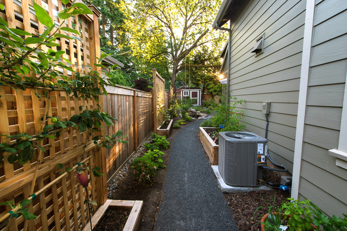 Landscaping Your Side Yard : Privacy structures screens paradise restored landscaping
